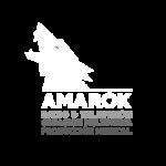 AMAROK radio y TV