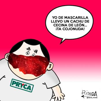 NACHIN MASCARILLA