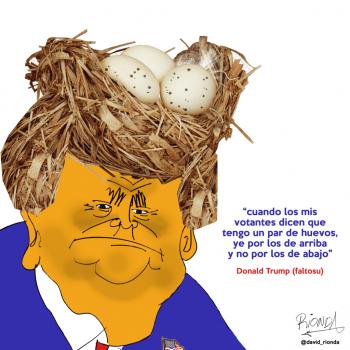 Donaldinsta