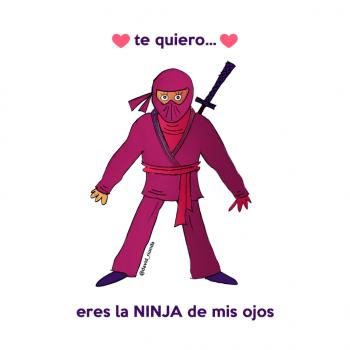 Ninjainsta